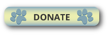 btn_donate2