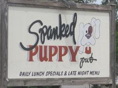 Spanked Puppy